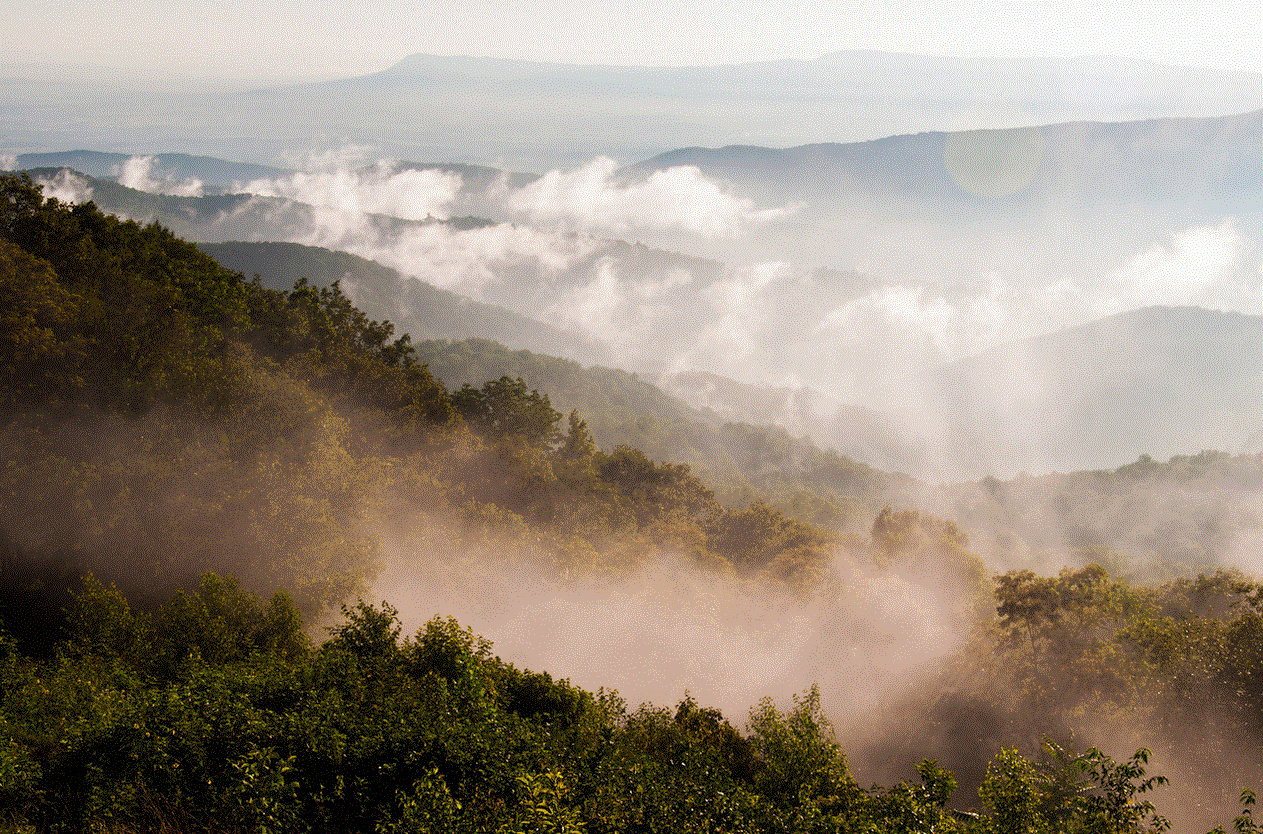 Blue Ridge mists - Jon Bilous.GIF